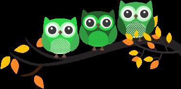 Búhos Test